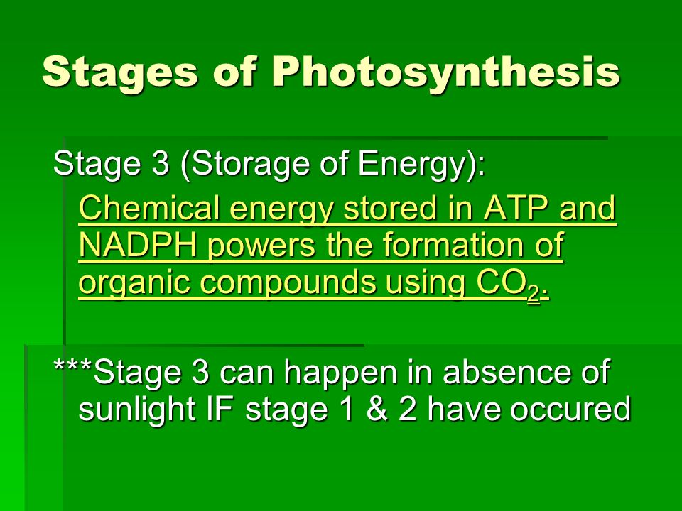 an analysis of the main stages of photosynthesis in organic energy conversion The synthesis of organic compounds the photosynthetic process depends on  main energy input in  energy conversion efficiency of photosynthesis.