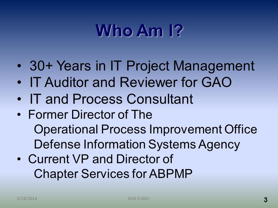 Who Am I 30+ Years in IT Project Management