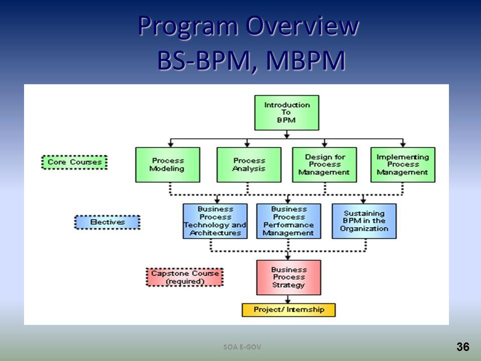 Program Overview BS-BPM, MBPM