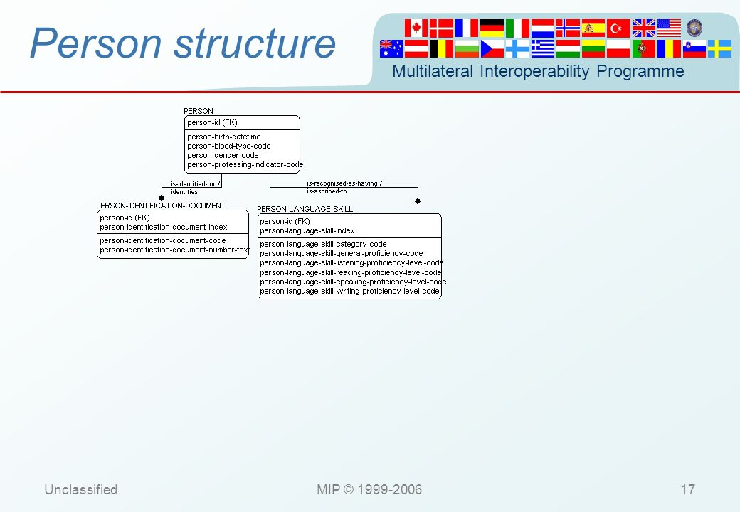 Person structure Unclassified MIP © 1999-2006