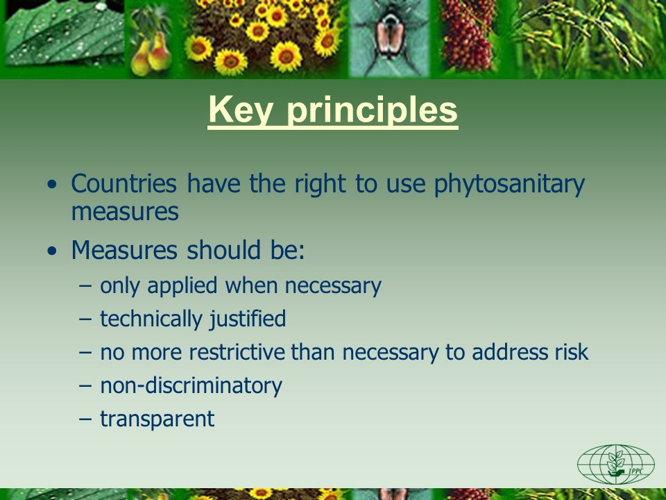 Key principles Countries have the right to use phytosanitary measures