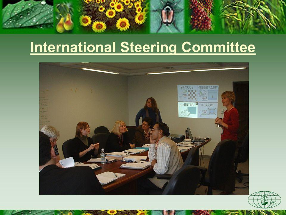 International Steering Committee