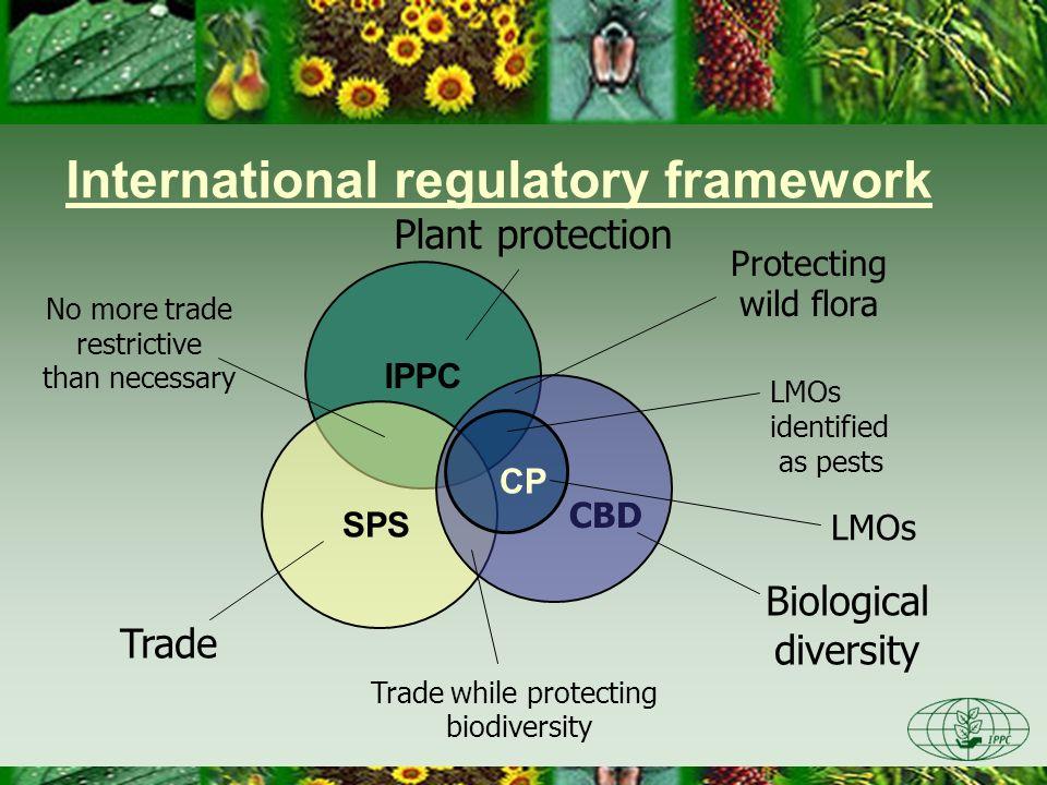 International regulatory framework
