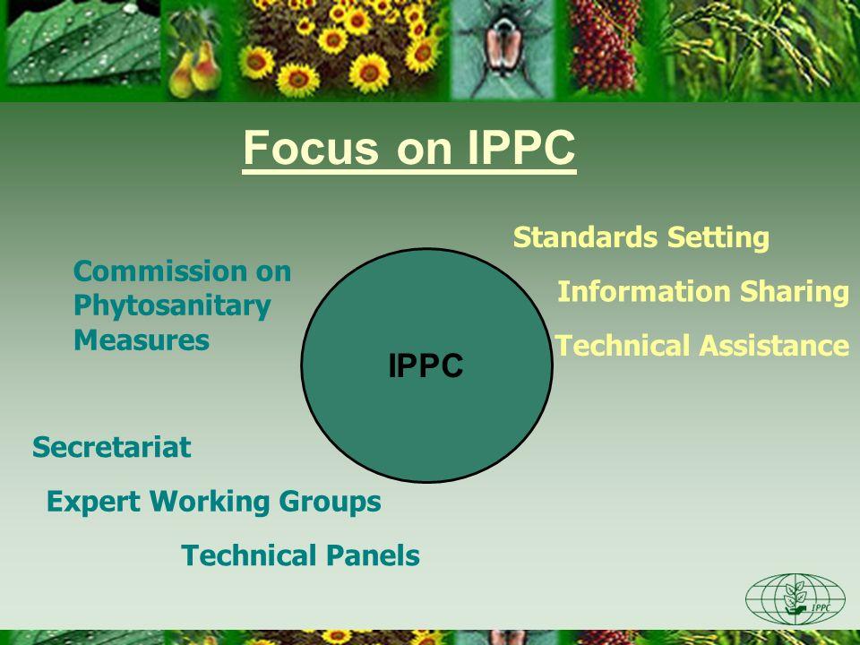 Focus on IPPC IPPC Standards Setting