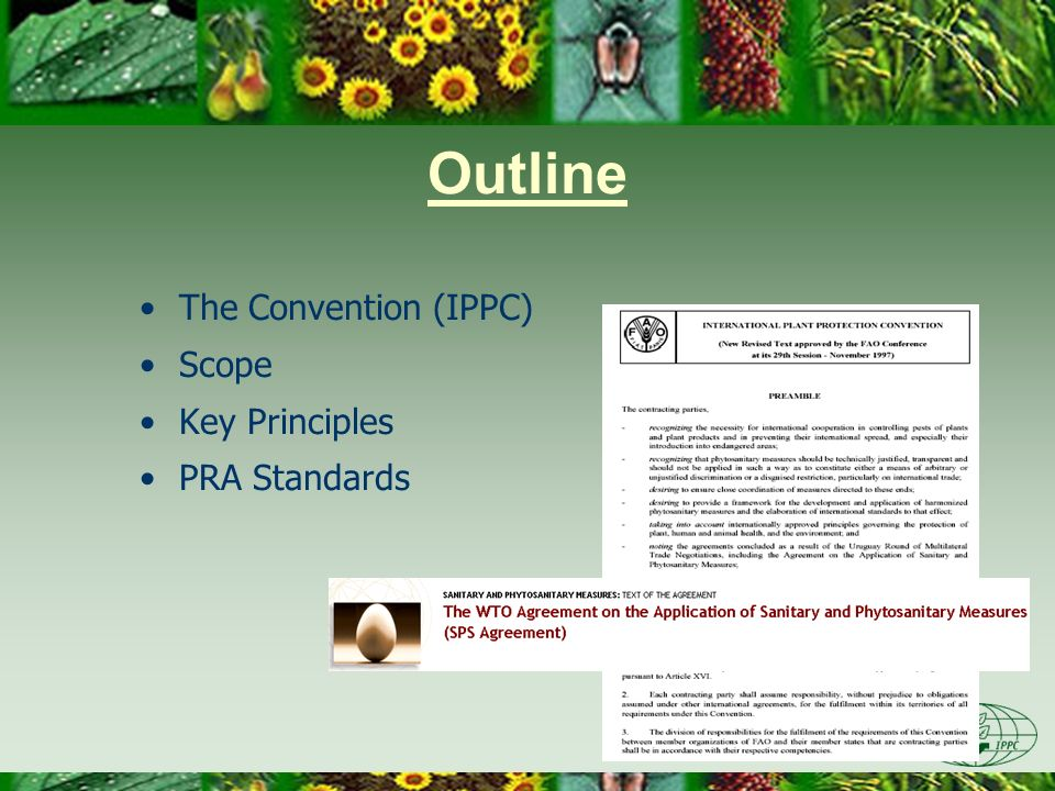 Outline The Convention (IPPC) Scope Key Principles PRA Standards