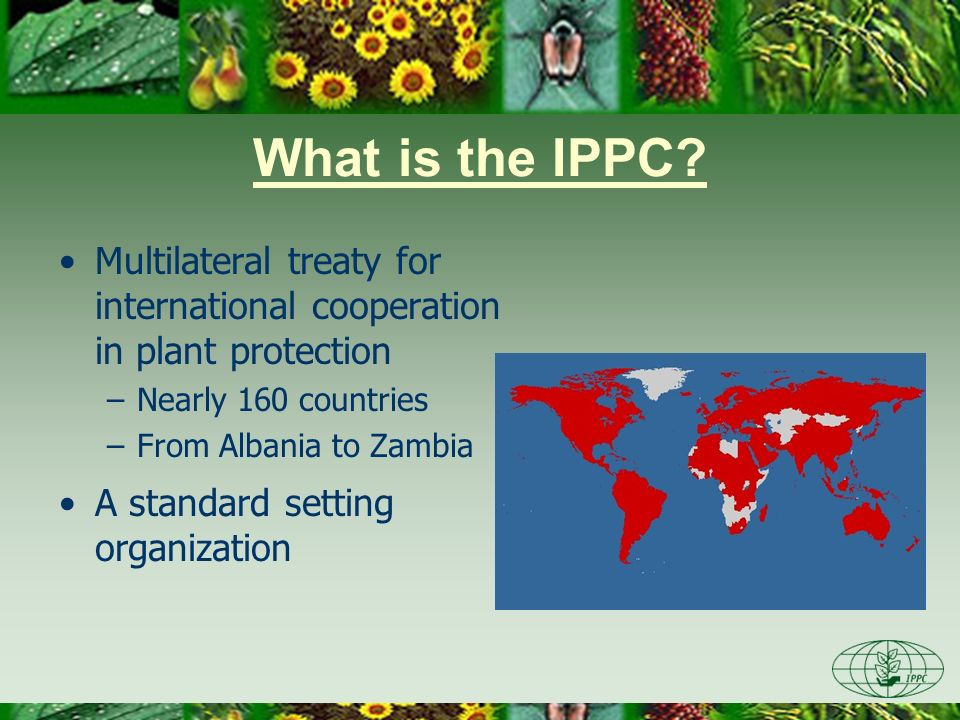 Day One 3/28/2017. What is the IPPC Multilateral treaty for international cooperation in plant protection.
