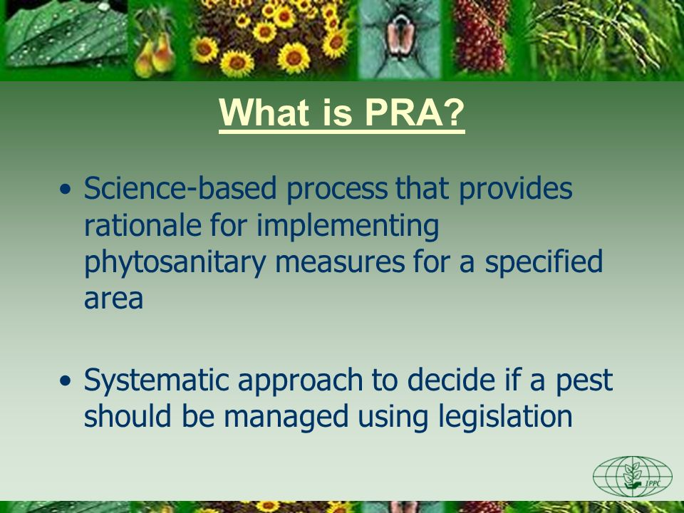 Day One 3/28/2017. What is PRA Science-based process that provides rationale for implementing phytosanitary measures for a specified area.