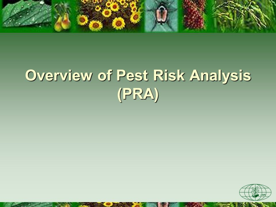 Overview of Pest Risk Analysis (PRA)
