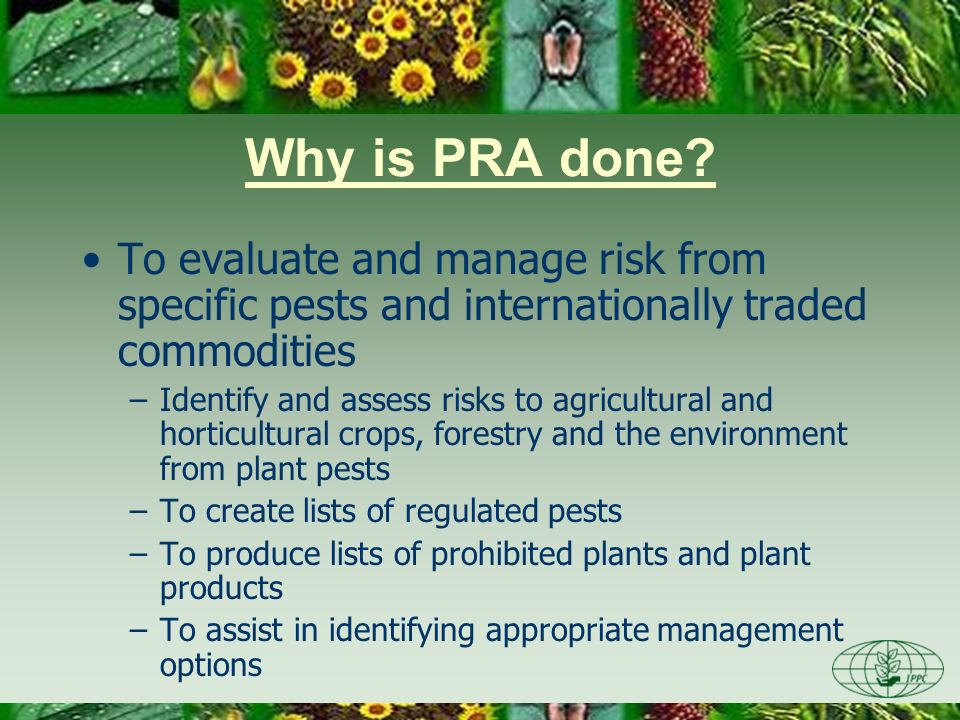 Day One 3/28/2017. Why is PRA done To evaluate and manage risk from specific pests and internationally traded commodities.
