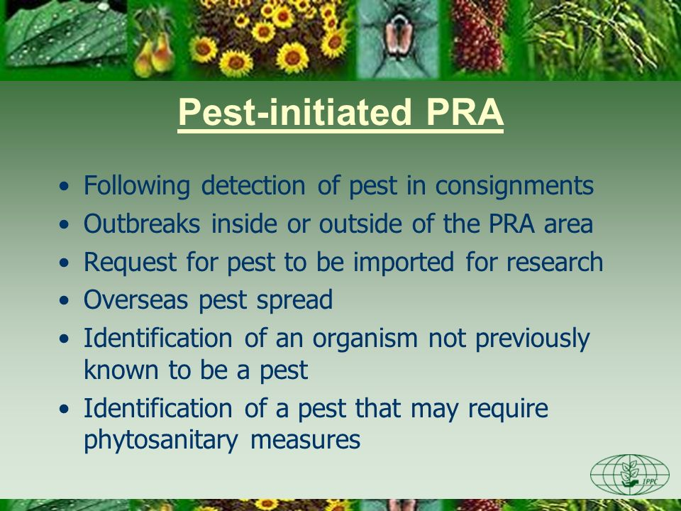 Pest-initiated PRA Following detection of pest in consignments