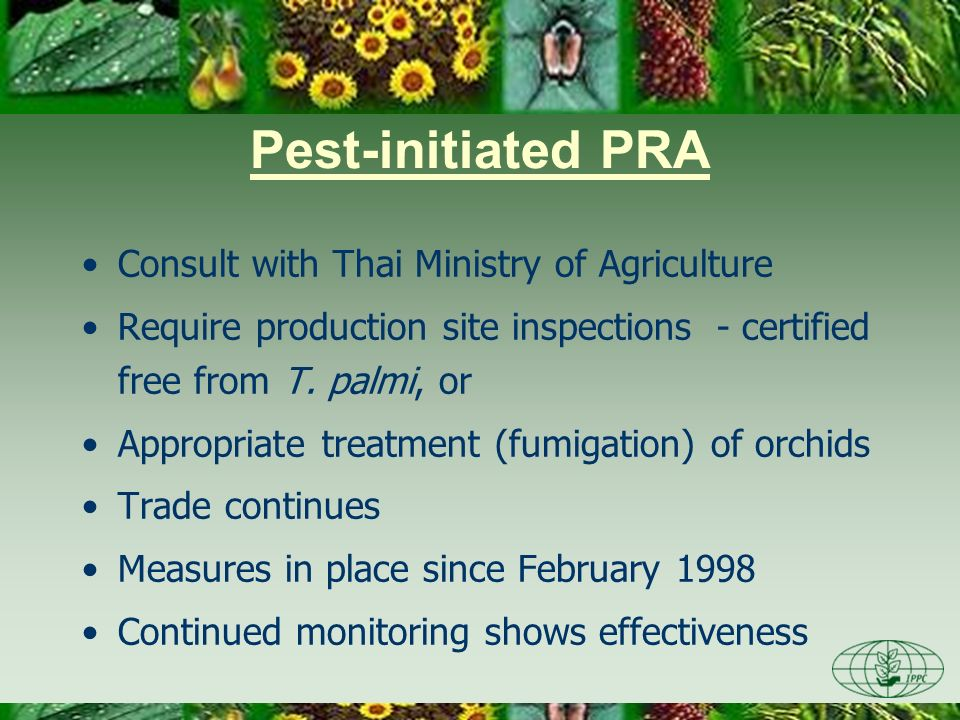 Pest-initiated PRA Consult with Thai Ministry of Agriculture