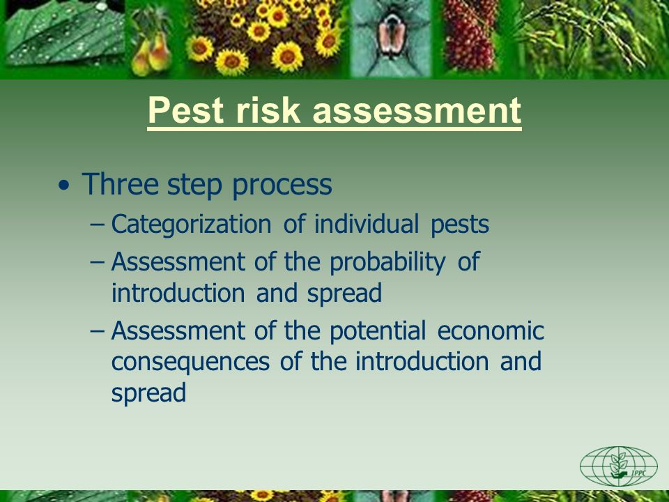 Pest risk assessment Three step process