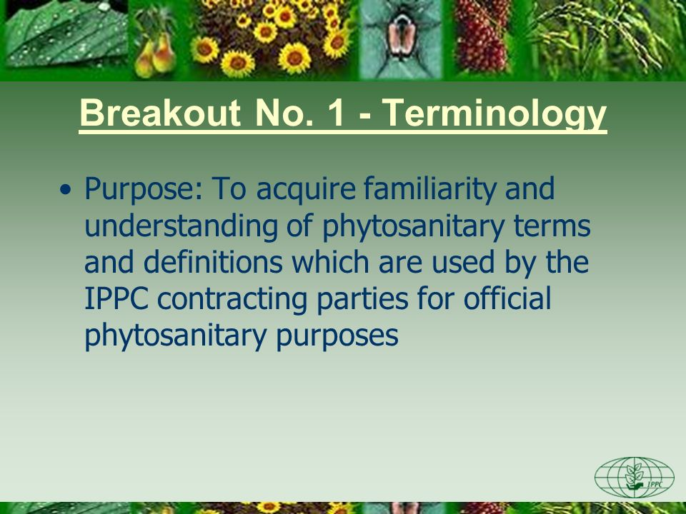 Breakout No. 1 - Terminology