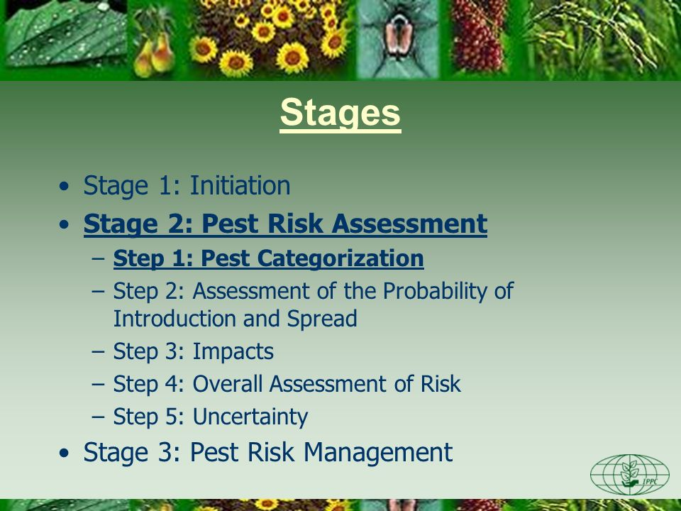 Stages Stage 1: Initiation Stage 2: Pest Risk Assessment