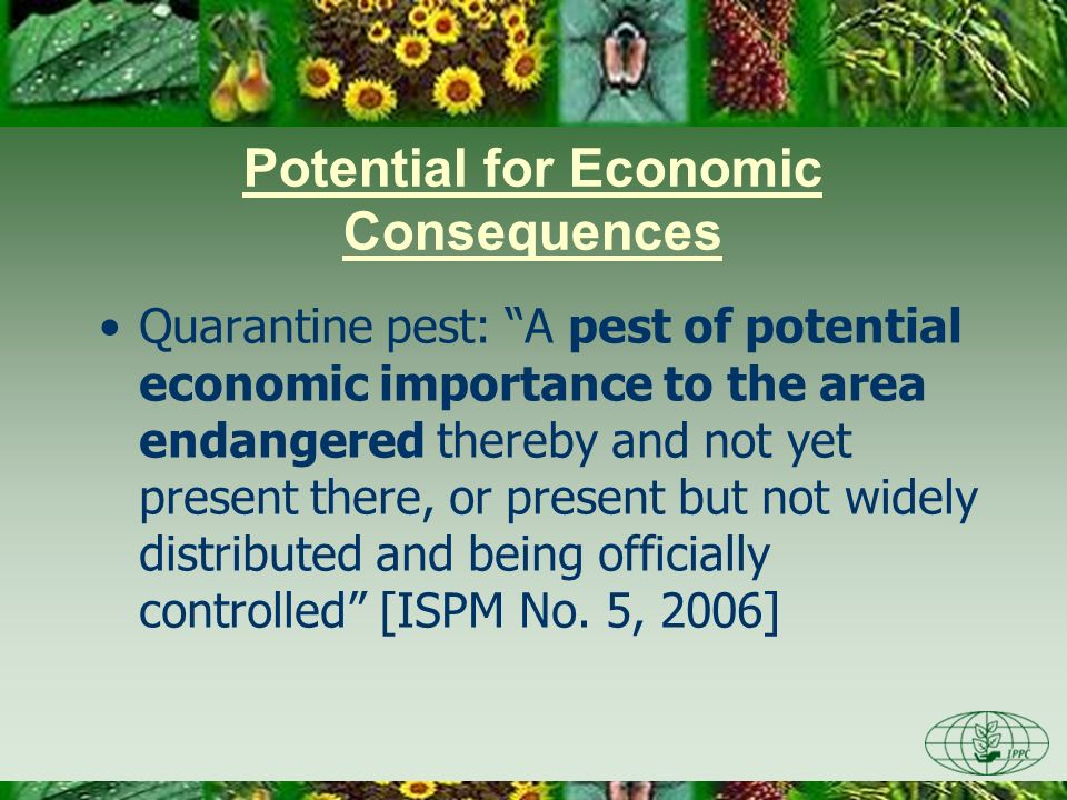 Potential for Economic Consequences