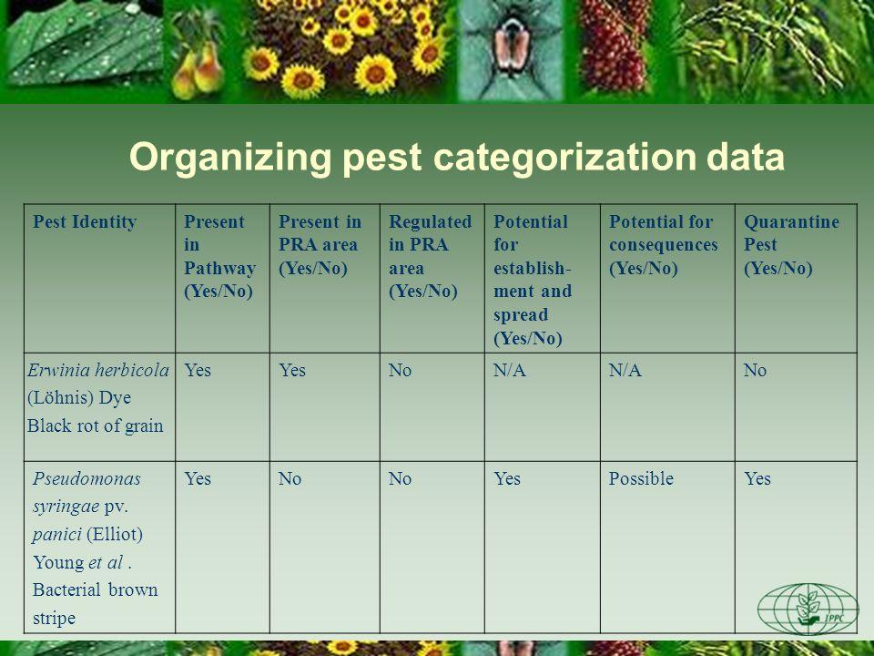 Organizing pest categorization data