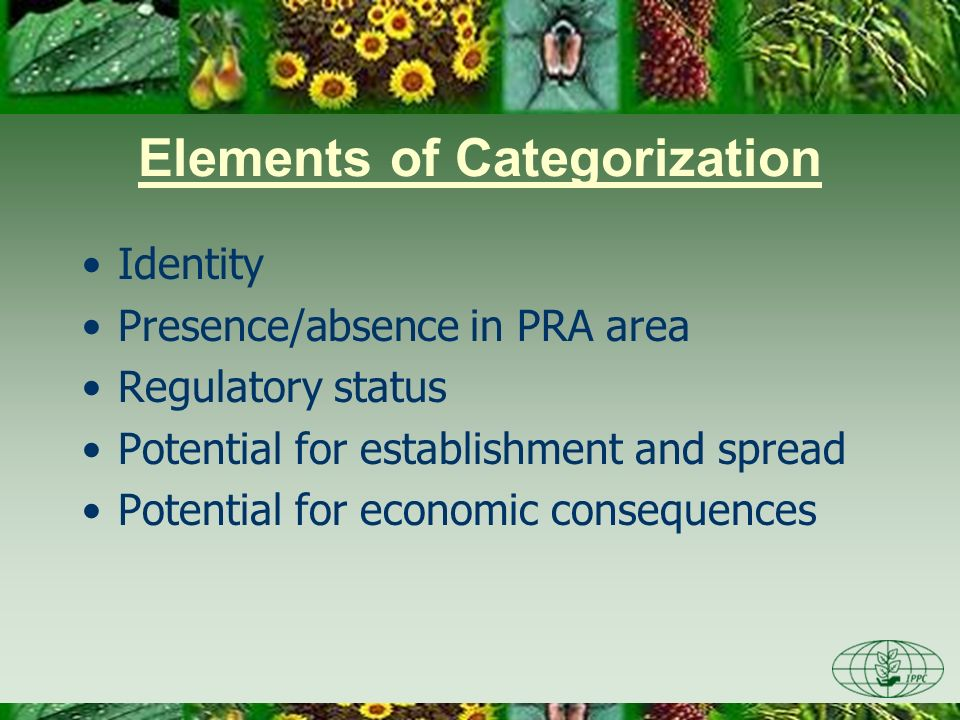 Elements of Categorization