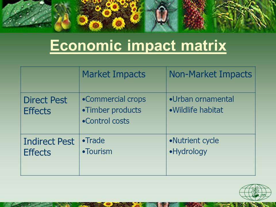 Economic impact matrix