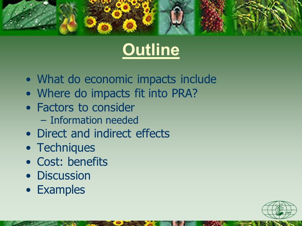 Outline What do economic impacts include