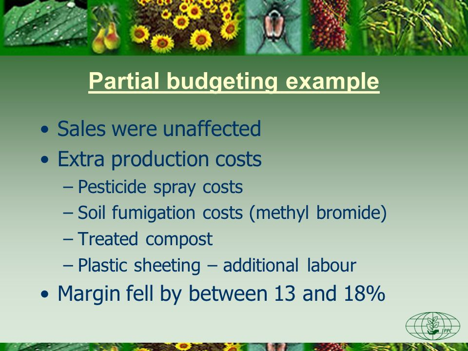 Partial budgeting example