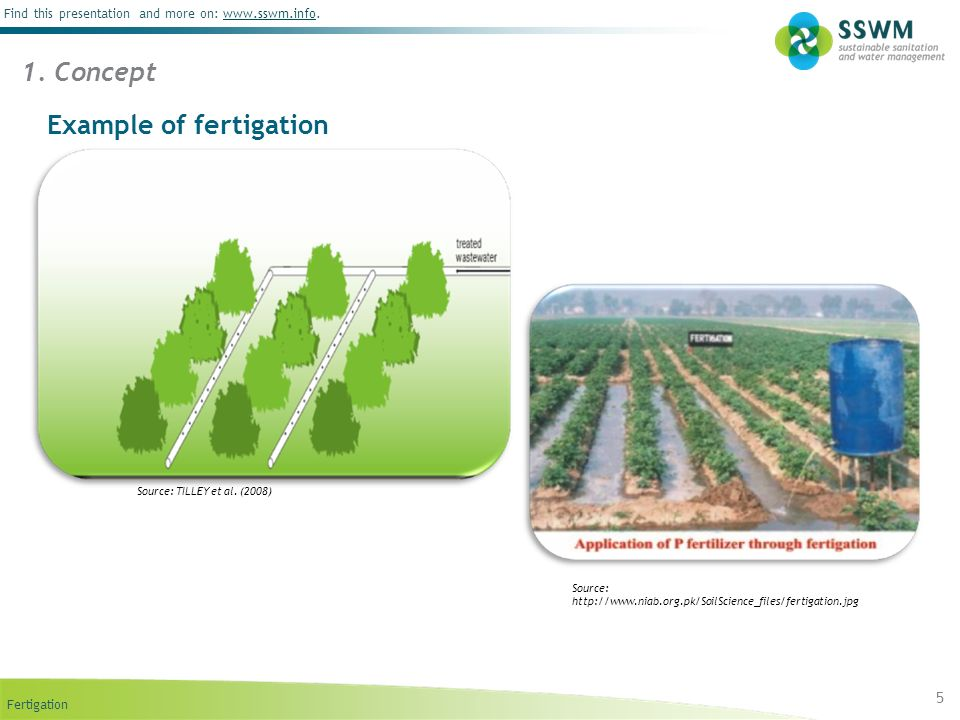 Example of fertigation