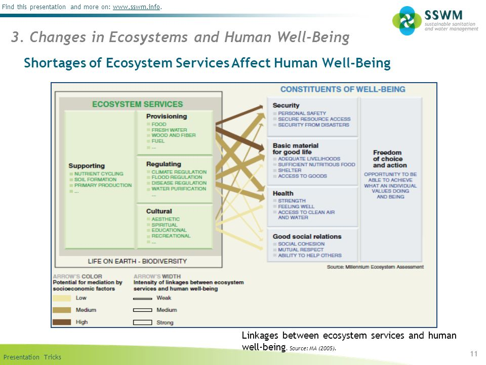 Shortages of Ecosystem Services Affect Human Well-Being