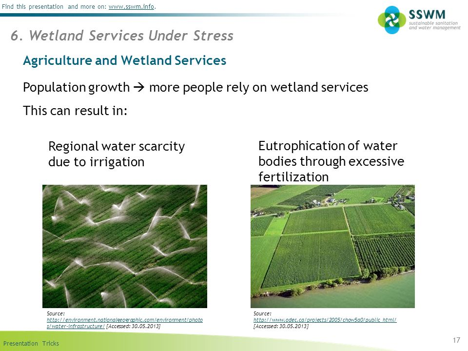 Agriculture and Wetland Services