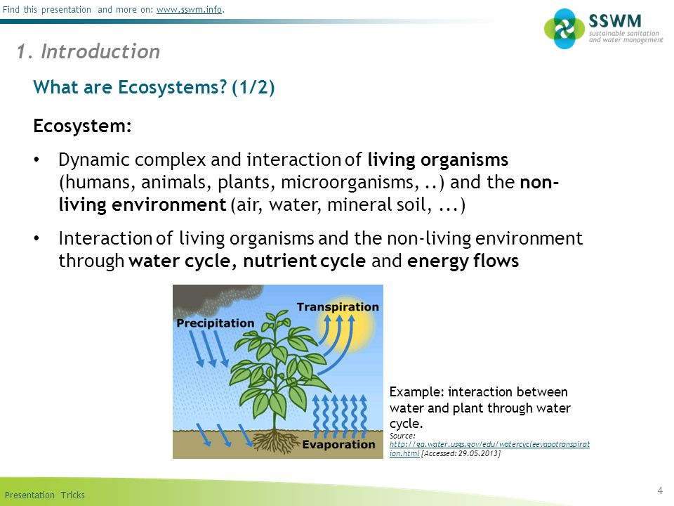 What are Ecosystems (1/2)