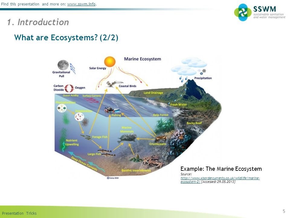 What are Ecosystems (2/2)