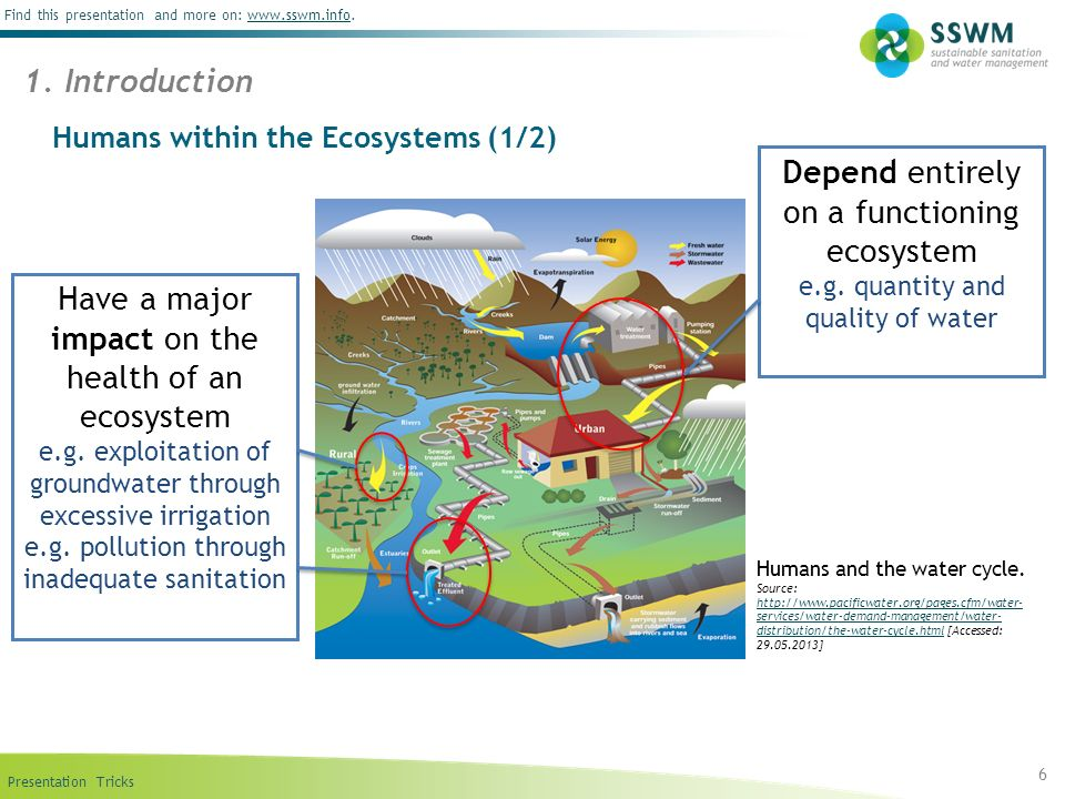 Humans within the Ecosystems (1/2)