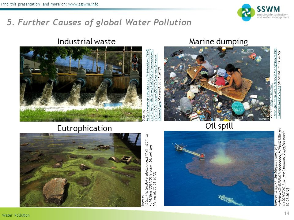 5. Further Causes of global Water Pollution