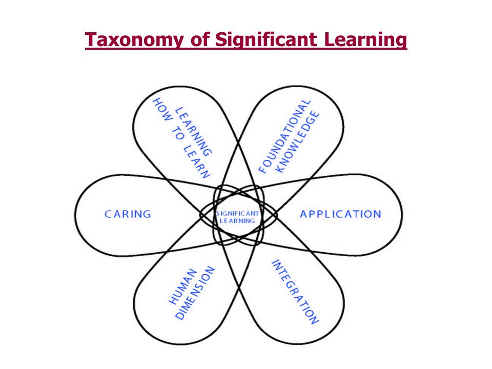 Taxonomy of Significant Learning