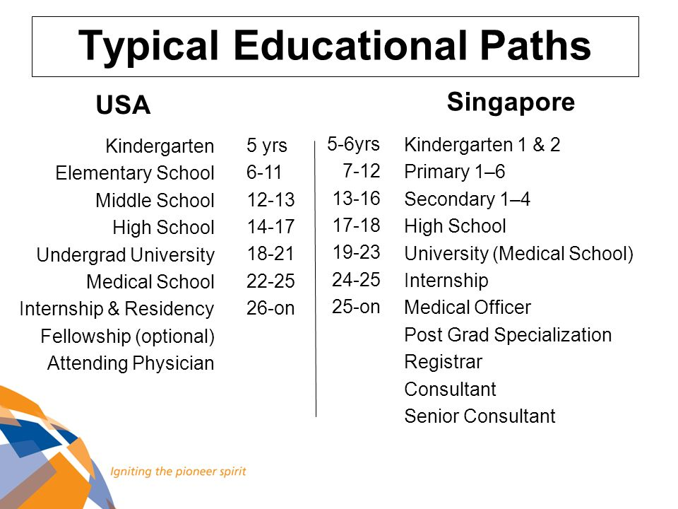 Typical Educational Paths