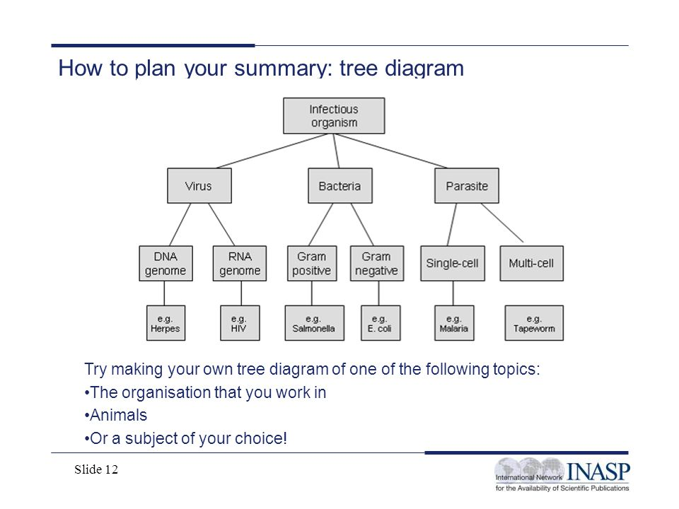 How to plan your summary: tree diagram