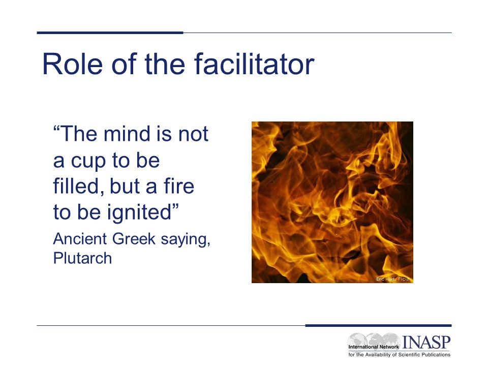 Role of the facilitator