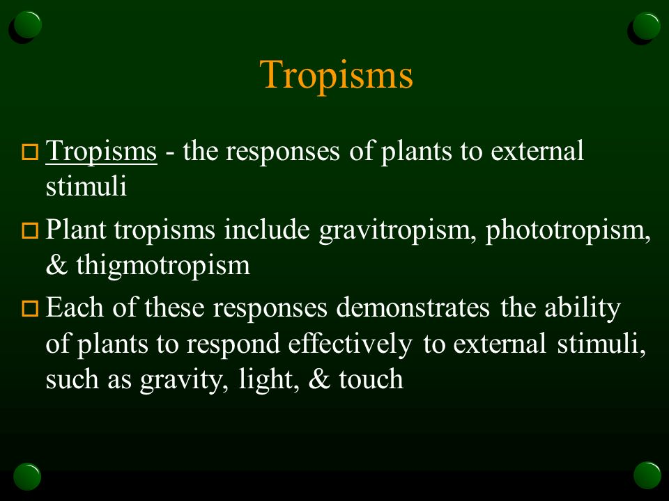 Tropisms Tropisms - the responses of plants to external stimuli