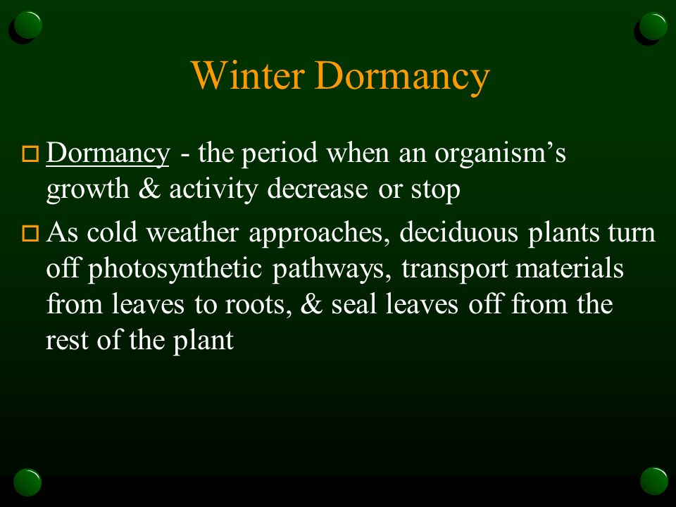 Winter Dormancy Dormancy - the period when an organism's growth & activity decrease or stop.