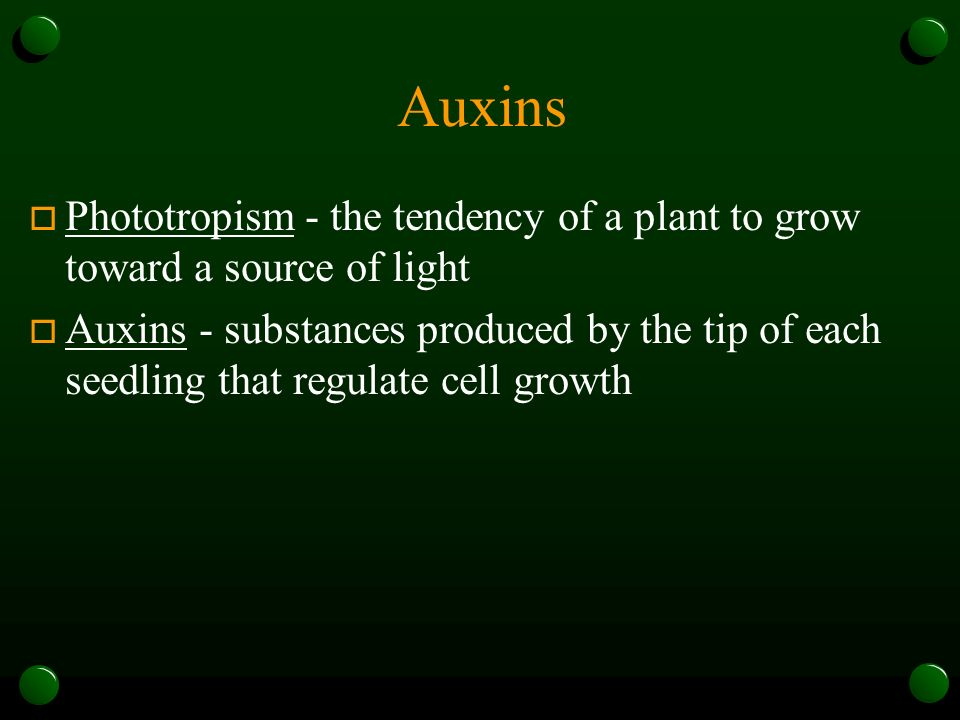 Auxins Phototropism - the tendency of a plant to grow toward a source of light.