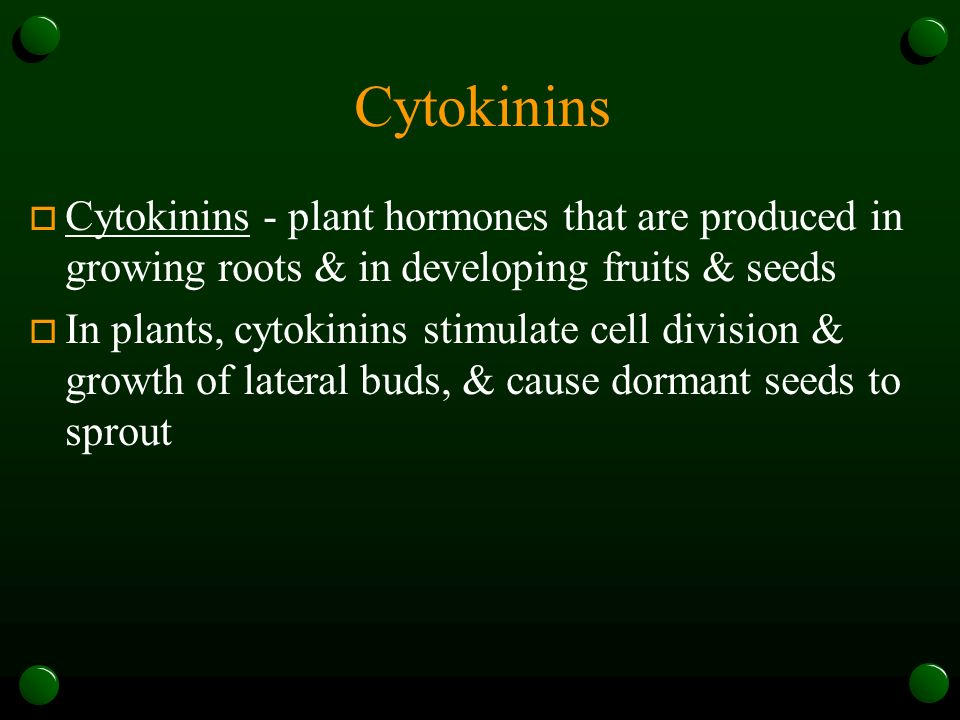 Cytokinins Cytokinins - plant hormones that are produced in growing roots & in developing fruits & seeds.