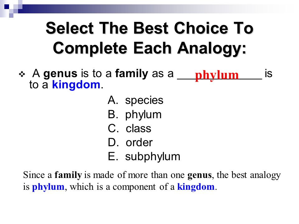 Select The Best Choice To Complete Each Analogy: