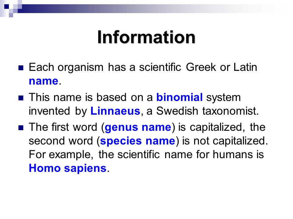 Information Each organism has a scientific Greek or Latin name.