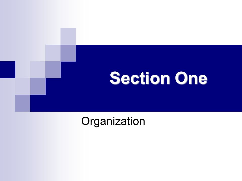 Section One Organization