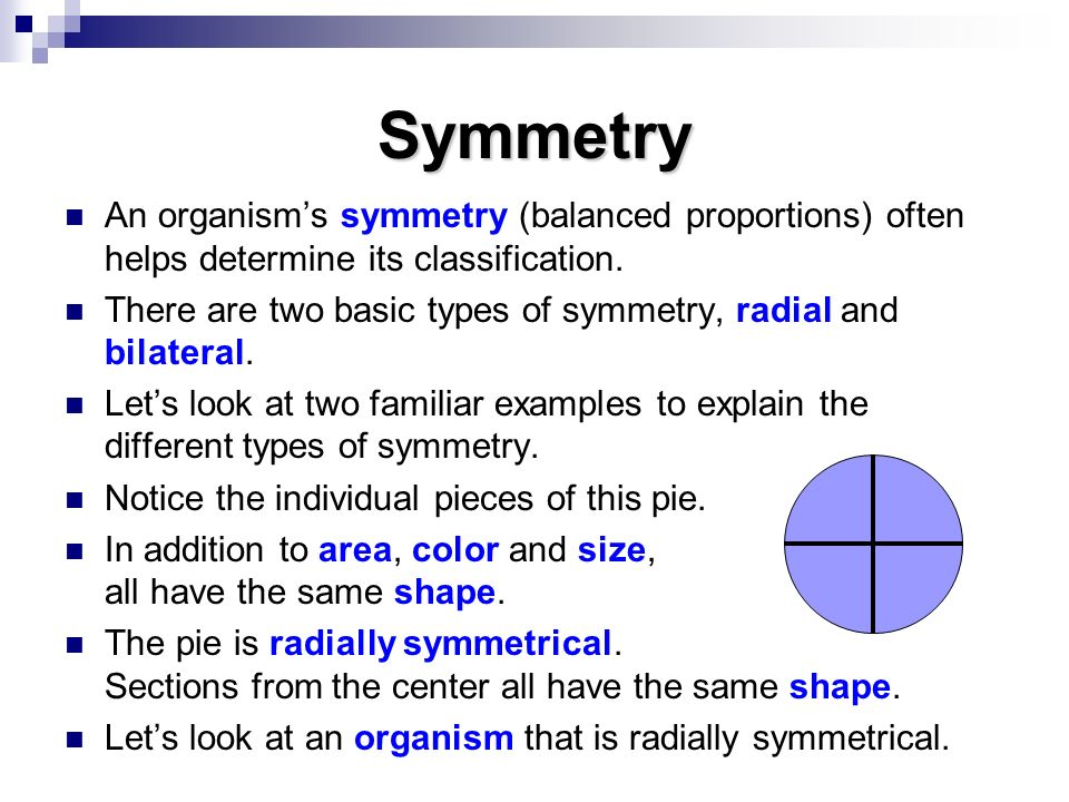 Symmetry An organism's symmetry (balanced proportions) often helps determine its classification.