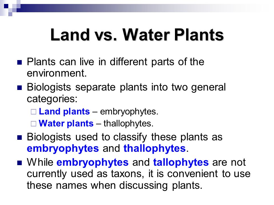 Land vs. Water Plants Plants can live in different parts of the environment. Biologists separate plants into two general categories: