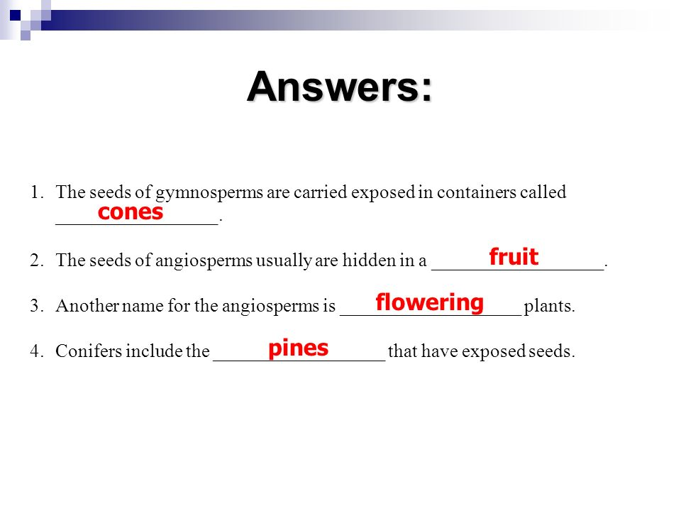 Answers: cones fruit flowering pines