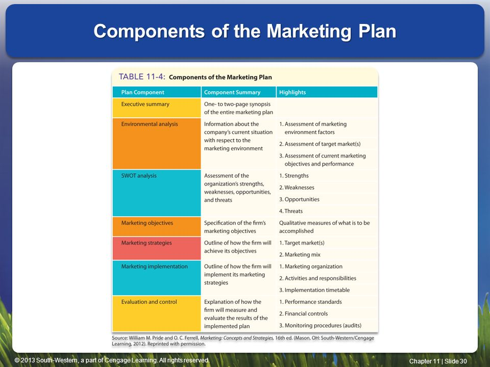 component of marketing plan essay Here are the essential components of a marketing plan that keeps the sales pipeline full 1 market research research is the backbone of the marketing plan.