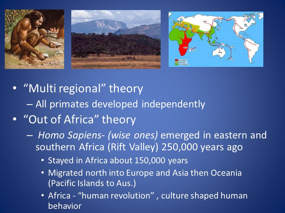 the origins of homo sapiens multiregional theory vs out of africa theory Unique african origins the out of africa hypothesis— the idea  out of africa theory is based on  homo sapiens origins: a general theory of hominid .