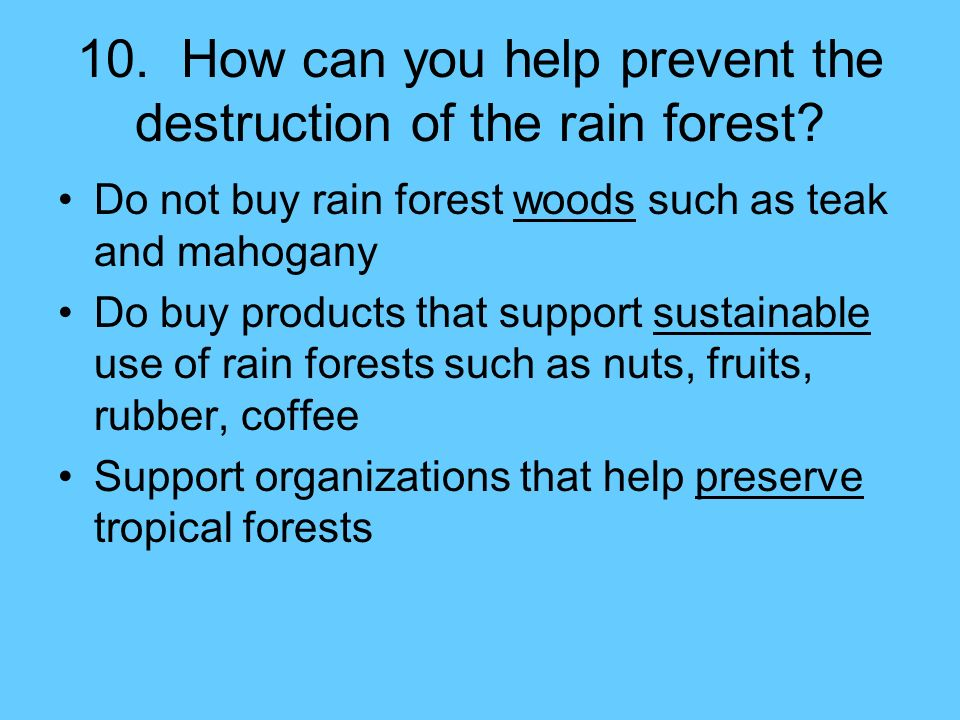 the destruction of rain forests M ost of the tropical rain forests straddle the equator one-third of the world's total is in the amazon basin of brazil rain forests usually experience high.