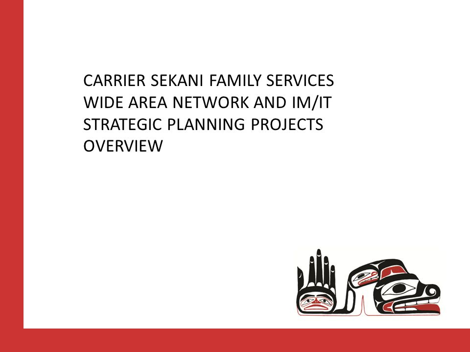CARRIER SEKANI FAMILY SERVICES WIDE AREA NETWORK AND IM/IT STRATEGIC PLANNING PROJECTS OVERVIEW