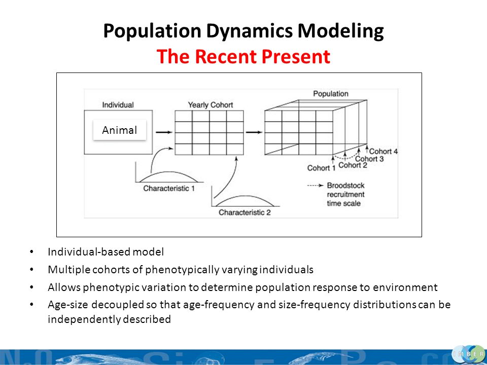 Population Dynamics Modeling The Recent Present